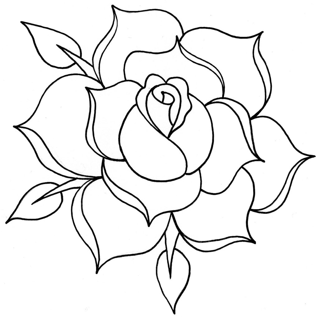 rose outline drawing line drawing rose clipartsco association for